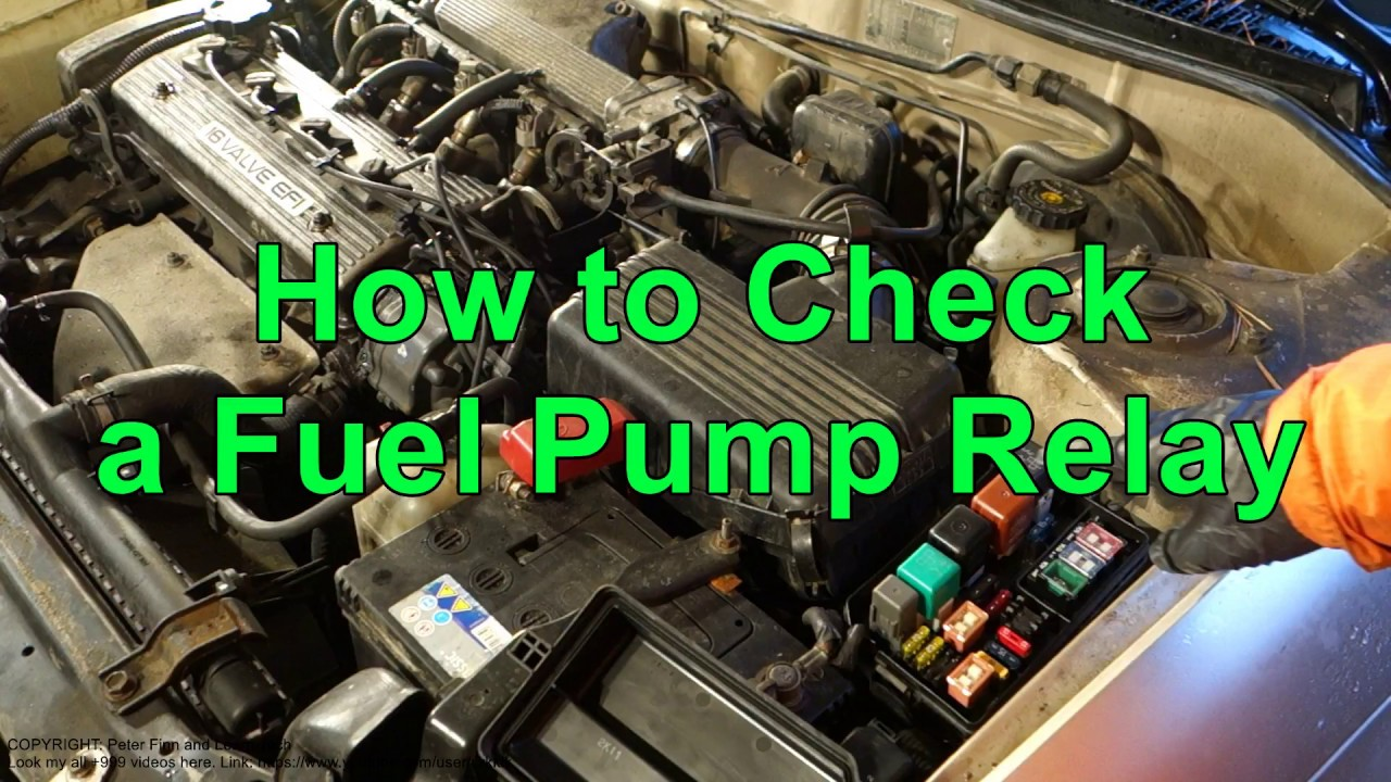 hight resolution of how to check a fuel pump relay in car