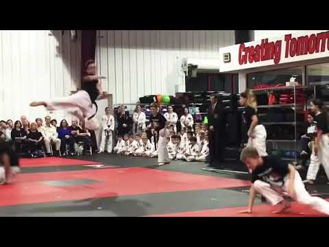 Demo Team – Trautwein's ATA Karate Sarasota | Taekwondo