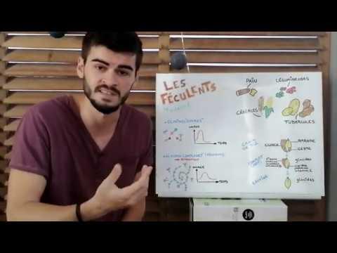 8 min | Nutri'Minute : Les féculents | Nutrisiel | Thomas