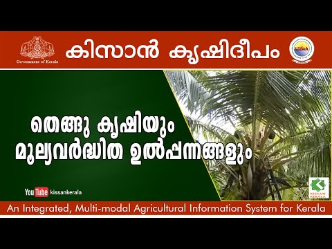 potentials of coconut cultivation and value addition process
