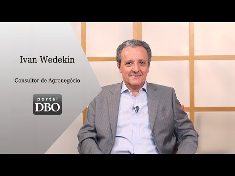 Ivan Wedekin quer que pecuária se transforme em agricultura