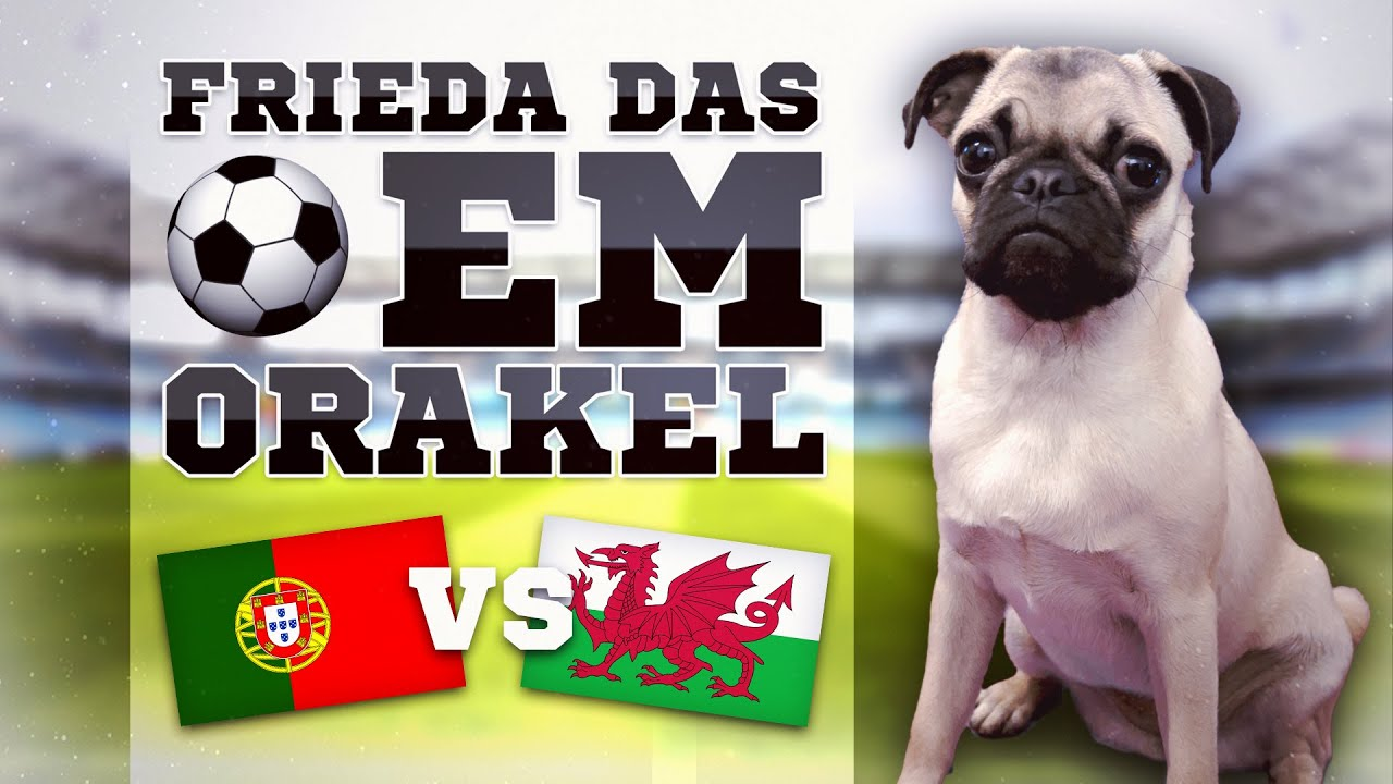 Ergebnis Wales Portugal
