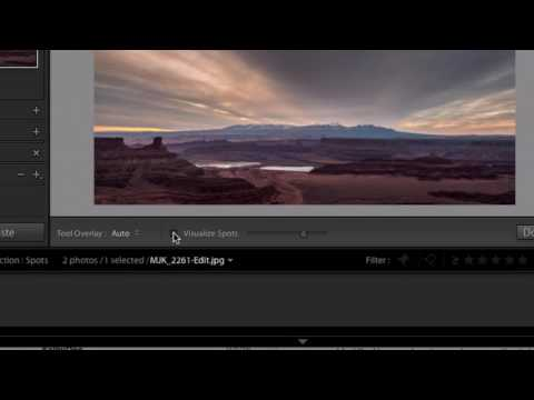 60 Second Lightroom Tips - Visualize Spots (#1)