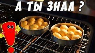 Пригорает низ пирога? Плохо печет газовая духовка? Что делать?