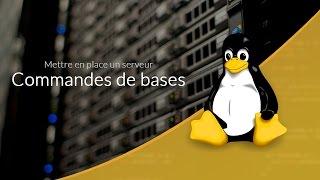 Mettre en place un serveur Web : Commandes de bases