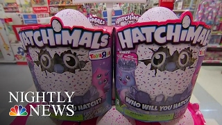 The Hatchimal: This Toy Craze Is Taking Over America | NBC Nightly News