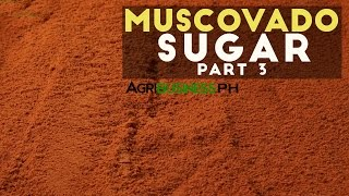 How to cook muscovado sugar : Muscovado sugar Part 3 #Agribusiness
