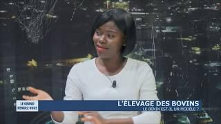 L'élevage des bovins - Le Bénin est il un modèle ?
