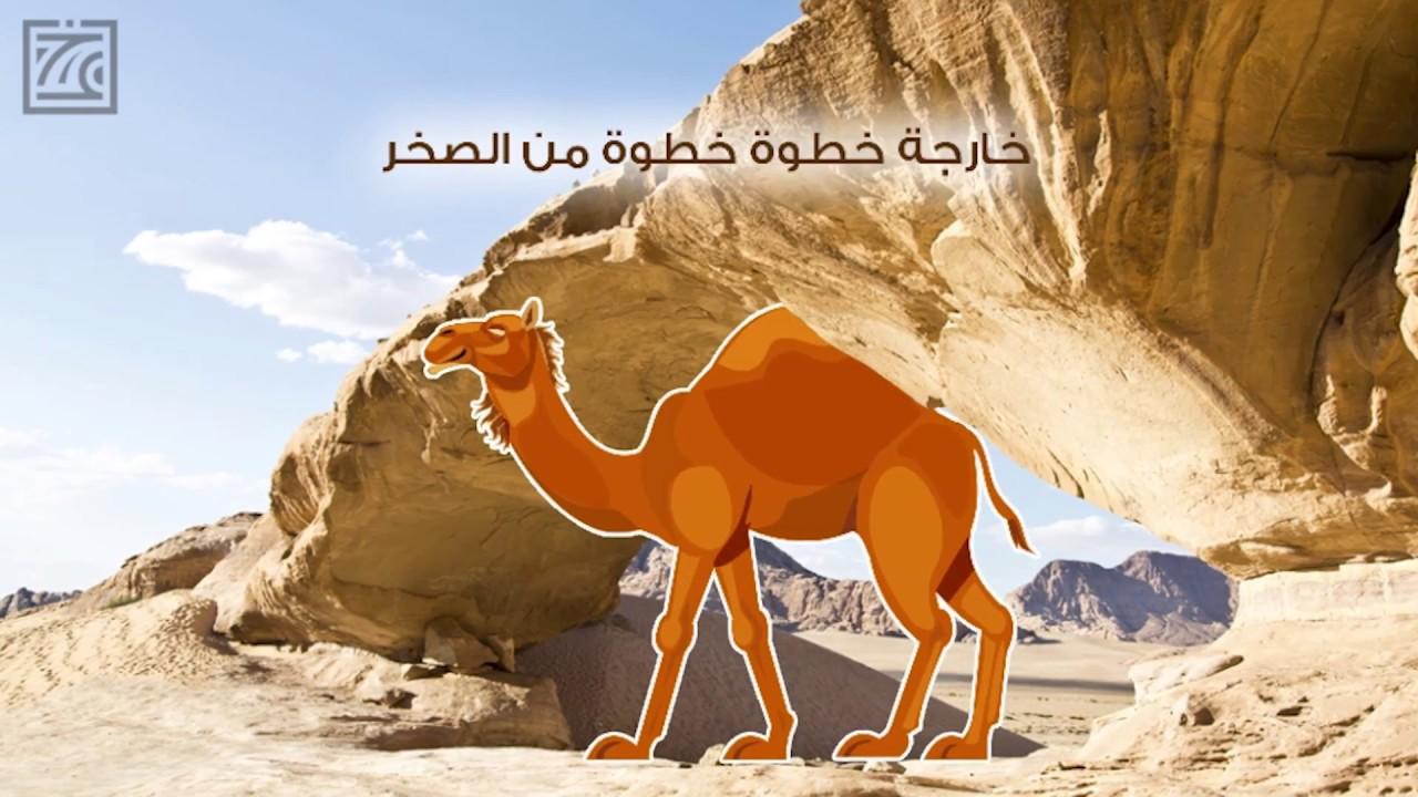 26d3ecc5a قصص الأنبياء - قصة سيدنا صالح فى ٦ مشاهد - YouTube