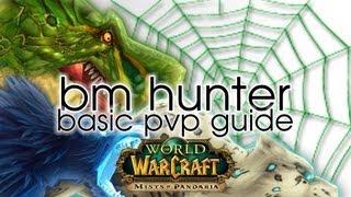 BM Hunter Basic PVP Guide - World of Warcraft: Mists of Pandaria Patch 5.1