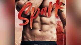 Spark Audio 1