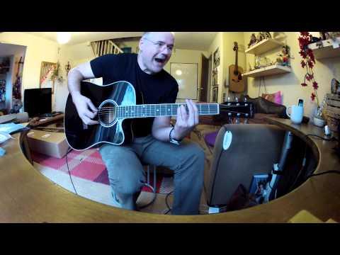 Harley Benton electro acoustic intro