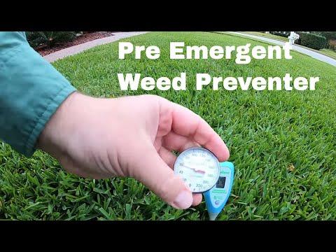 When To Apply Prodiamine Pre-Emergent Herbicide + Lawn Care Tips