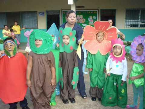 Proyecto Las Plantas Escuela Llano Grande Abajo Youtube
