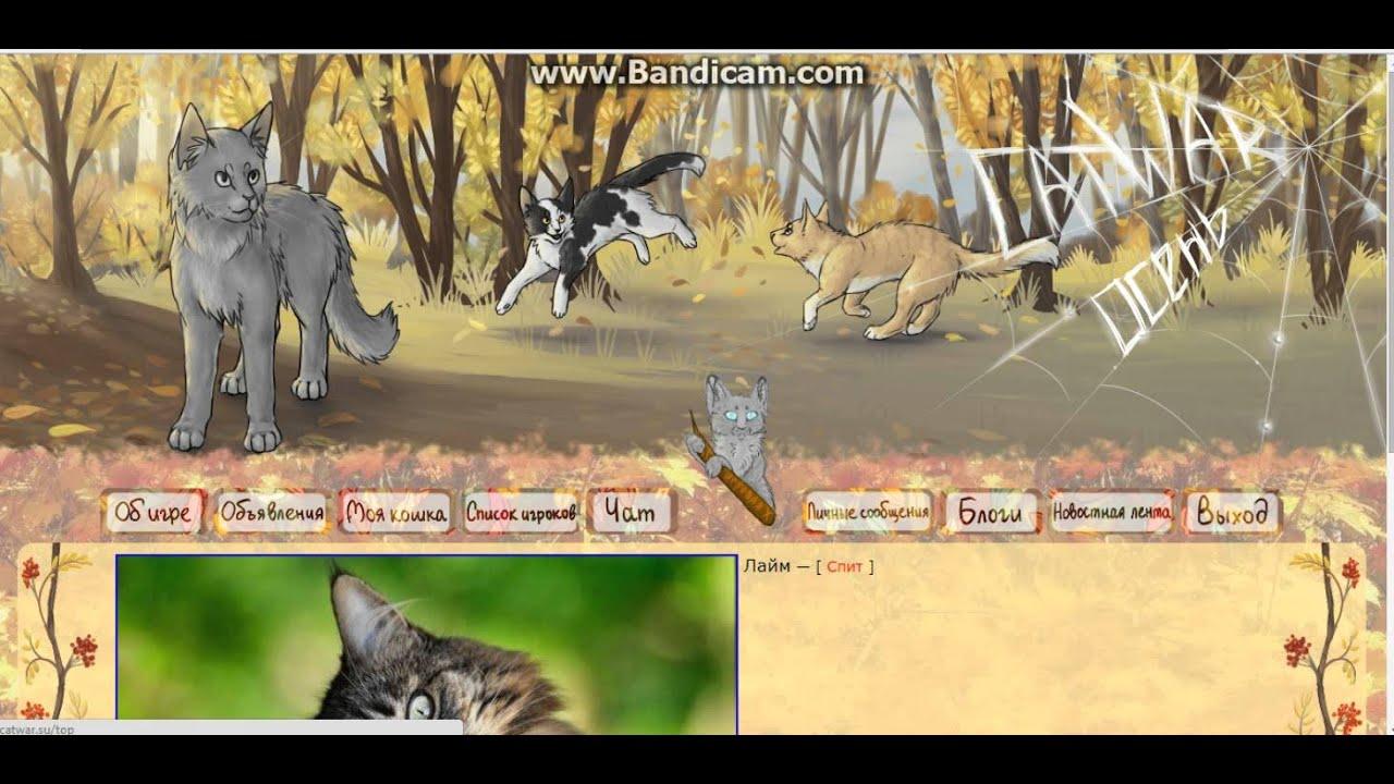 Игра про котов воителей catwar