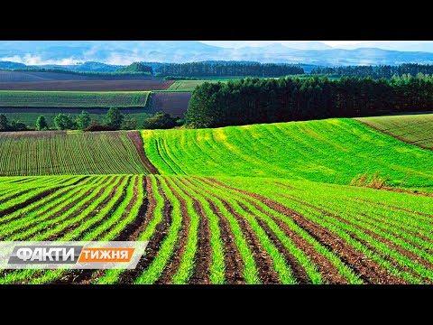 Земельная реформа: опыт