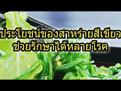 ประโยชน์ของสาหร่ายสีเขียวช่วยรักษาได้หลายโรค
