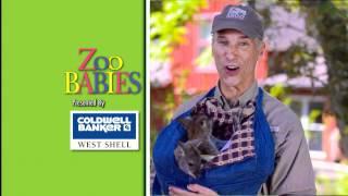 Cincinnati Zoo 2012 Jingle TV Commercial