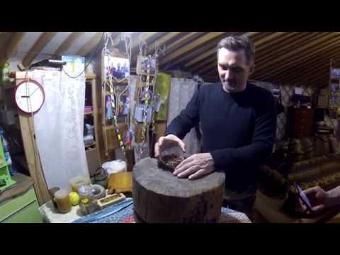 Как очистить кедровые орехи от скорлупы