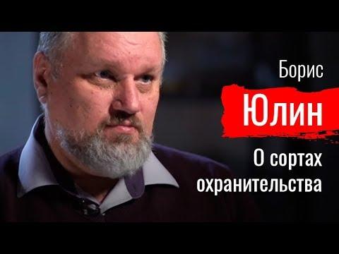 Маски-шоу. Борис Юлин