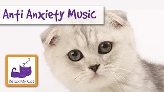 CAT MUSIC - Soft music to relax cats and kittens - MUSIC FOR PETS - Cats with anxiety problems