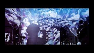 眩暈SIREN - 紫陽花