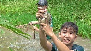 Ra ruộng bắt cá nấu lẩu mắm bông lục bình ăn ngay tại ruộng | Góc Miền Tây - Tập 175