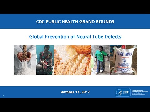 Global Prevention Of Neural Tube Defects