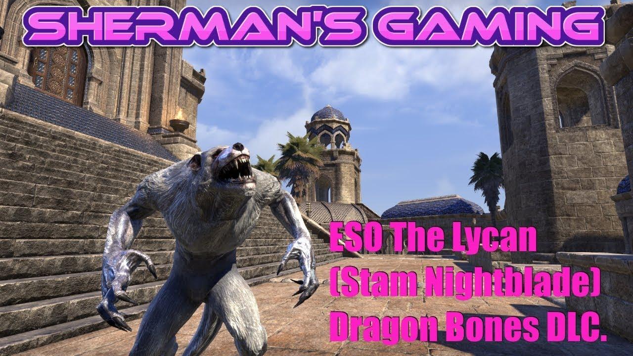 Eso The Lycan Stam Nightblade Dragon Bones Dlc Youtube