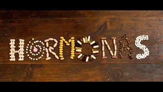 Hormonas - (Me llamo) Sebastián [Video Oficial ft. Victoria Volkova]