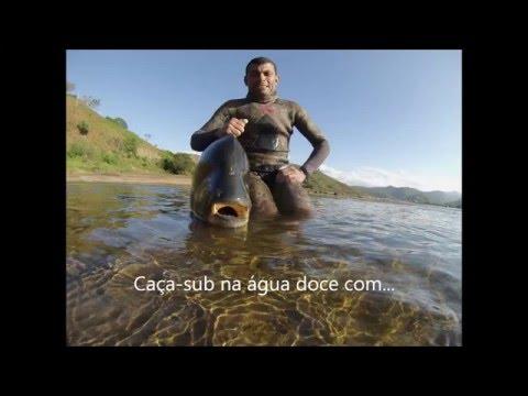 Freshwater Spearfishing in Brazil