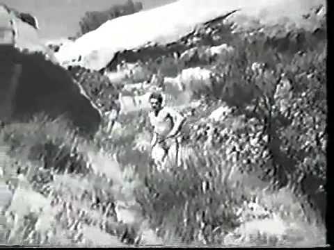 Sư Tử Đánh Bại Hổ Vằn.flv