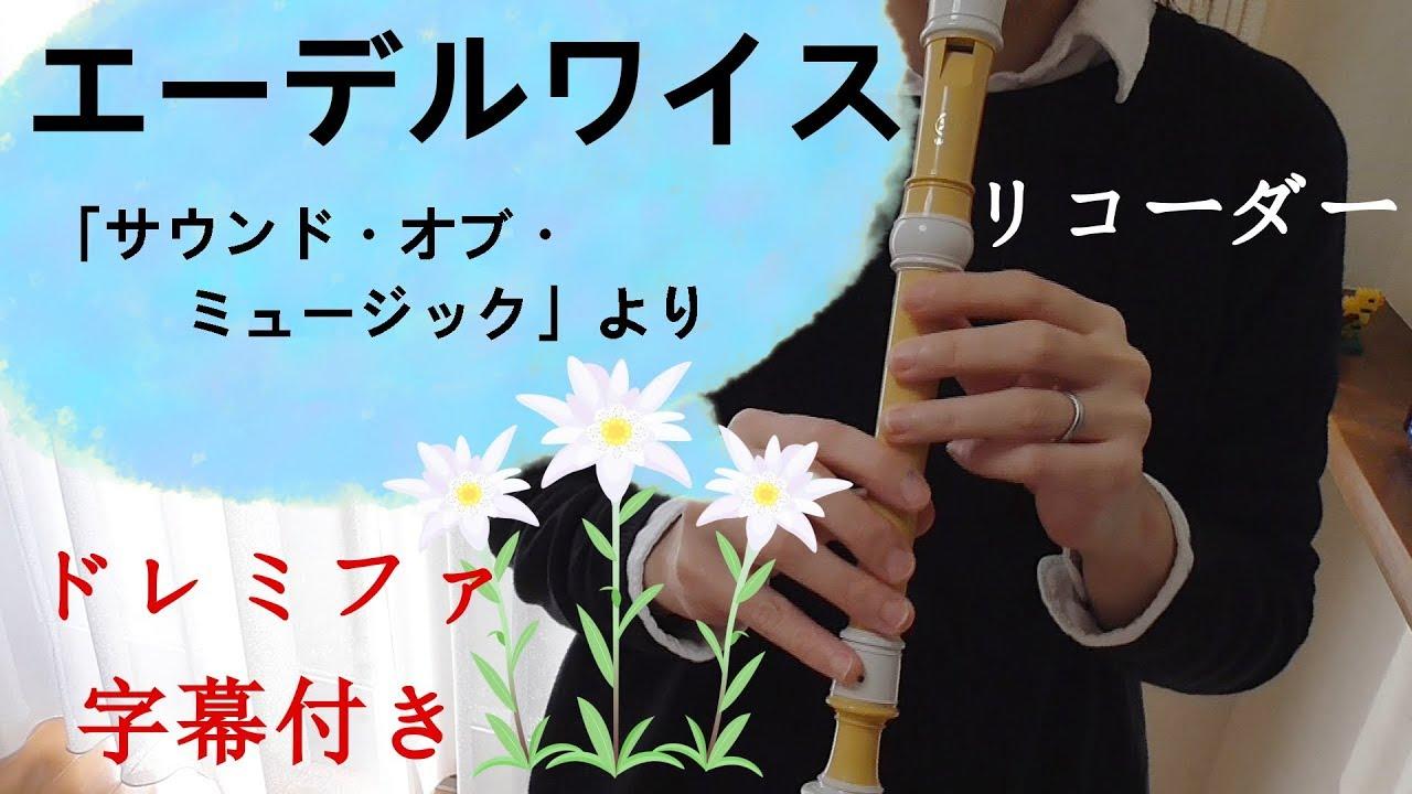リコーダー 楽譜 エーデルワイス エーデルワイス(『サウンド・オブ・ミュージック』より) 【3