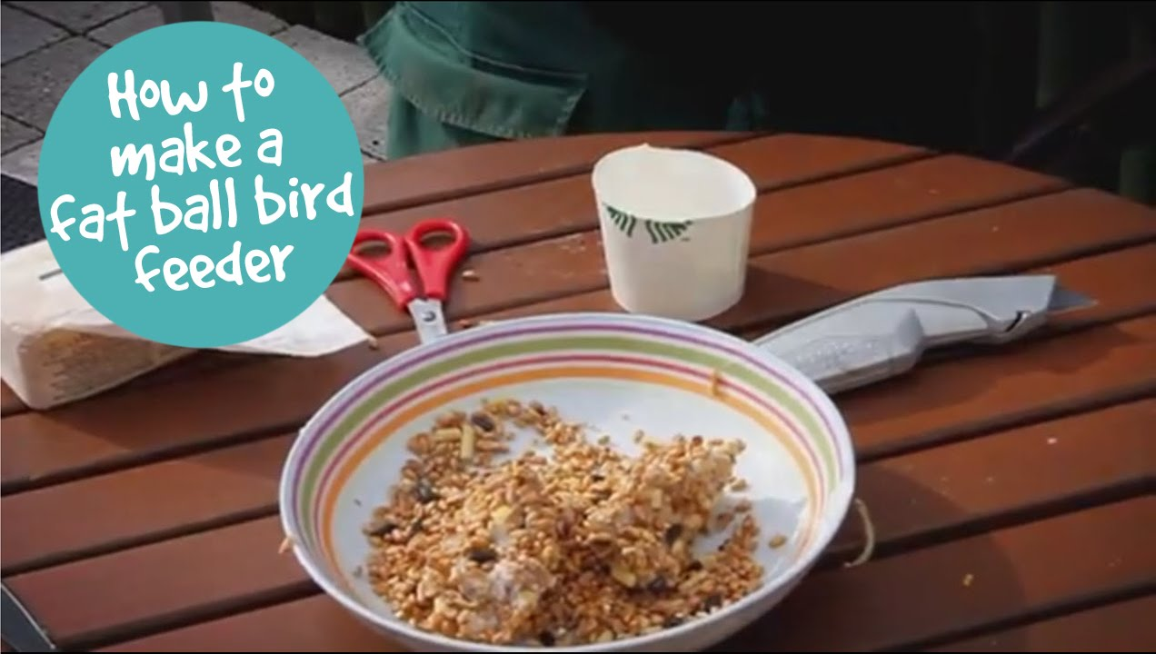 how to make a fat ball bird feeder youtube. Black Bedroom Furniture Sets. Home Design Ideas