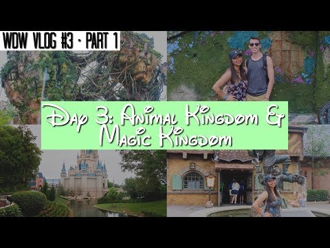 Walt Disney World Vlog: Day 3 - PART 1 Disney's Animal Kingdom | June 2017