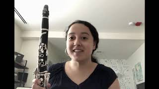Introduction to the Clarinet