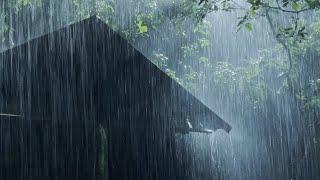Спите мгновенно за 3 минуты с сильным дождем и громом в старом доме в туманном лесу ночью