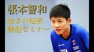 世界卓球2017・張本智和(はりもとともかず)選手、スーパー中学生2年生...