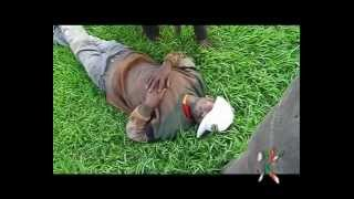 Naswa Kenya show (Mask Bully)