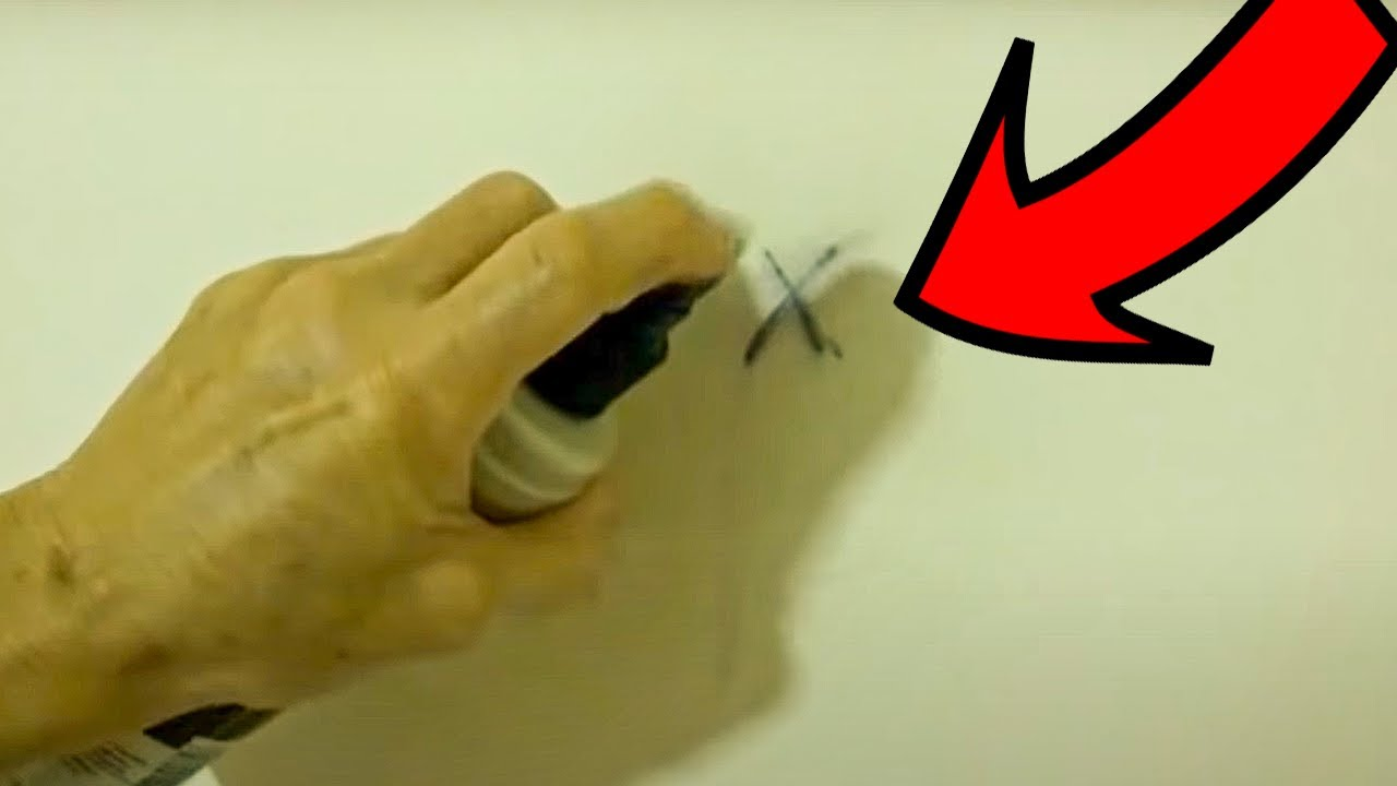 how to remove permanent marker from walls carpet youtube