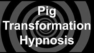 Pig Transformation Hypnosis