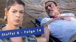 The Walking Dead Staffel 8: Die 10 denkwürdigsten Momente aus Folge 14