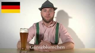 Almanca'nın Diğer Dillerden Farkı