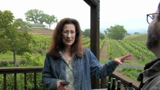 Food and Wine Tour of Sonoma County, California, with Jeffrey Moss | Pottery Barn