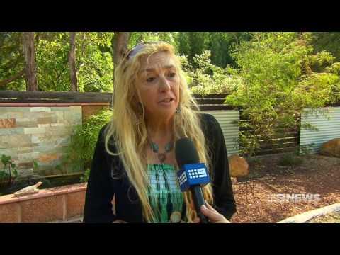 Dog Baiting | 9 News Perth