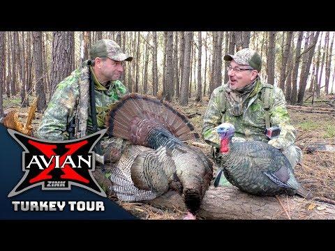 Lowcountry Longbeards With Mark Drury Pt. 1 - Avian-X Turkey Tour