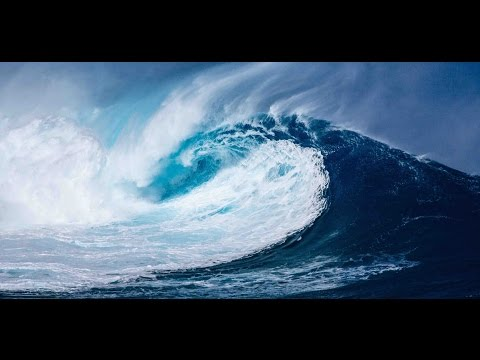tsunami and love canal