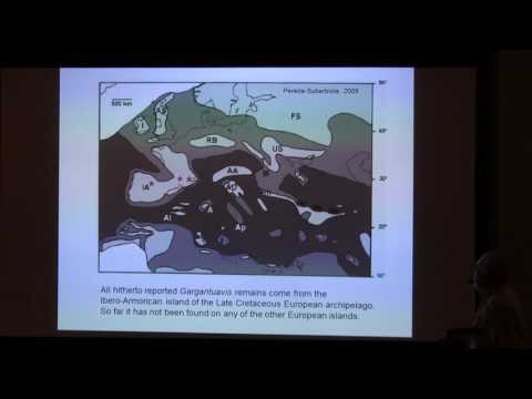 THE GIANT BIRD GARGANTUAVIS: A CASE OF INSULAR EVOLUTION IN LATE CRETACEOUS EUROPE?