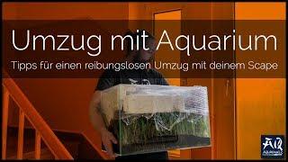 UMZUG MIT AQUARIUM & GLASWARE ZERBROCHEN | Tipps & Tricks für den Umzug eines Aquariums | AquaOwner