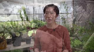 팝그린  도시농업관리사
